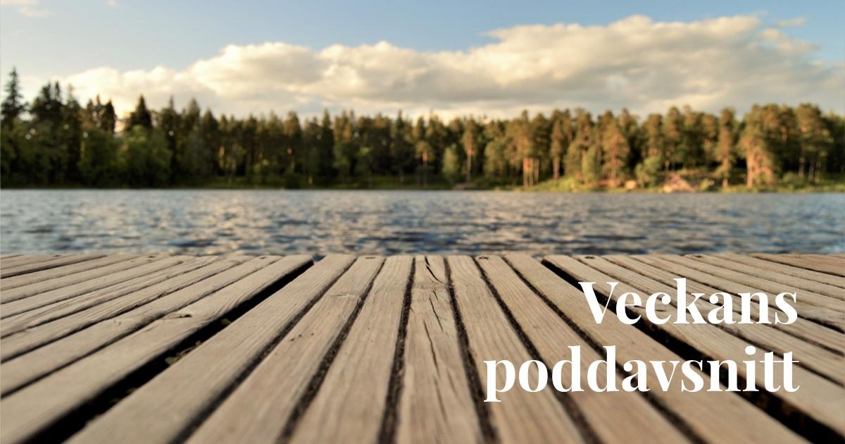 #2 Veckans poddcast med Robert Kusén